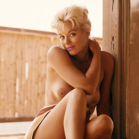 Donna Lynn nude for Playboy