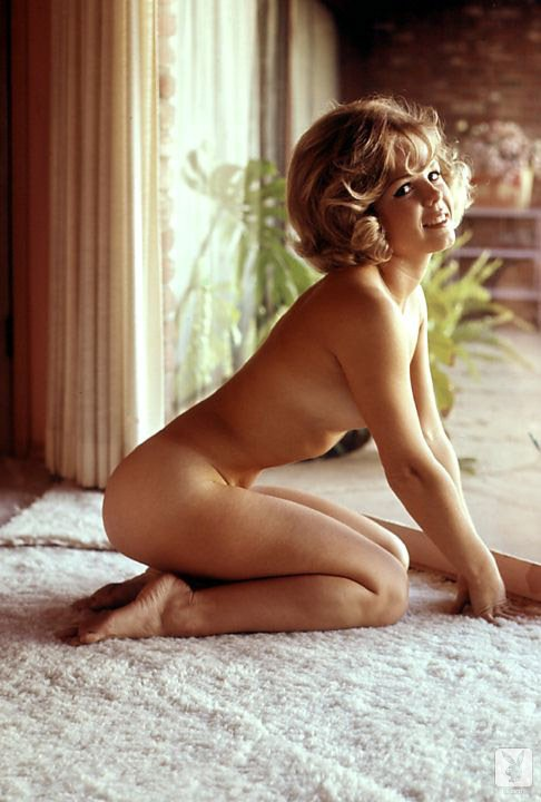 Sue Williams nude for Playboy