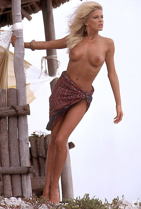 Dona Speir nude for Playboy