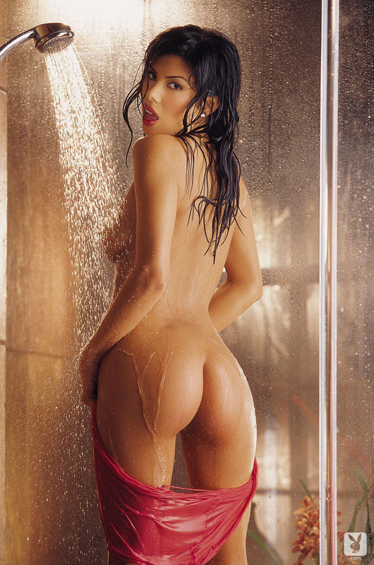 Michele Rogers nude for Playboy